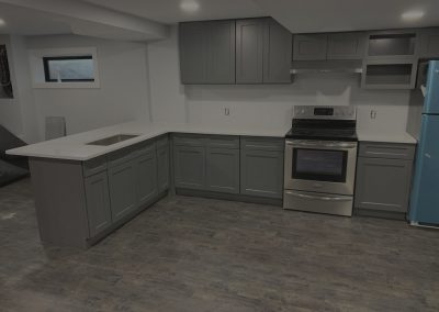 Basement and Walkout Remodel